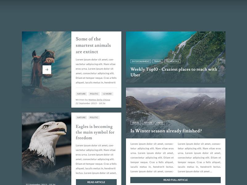 Blog and Magazine UI Kit Free PSD