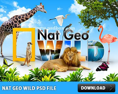 nat geo wild free psd file