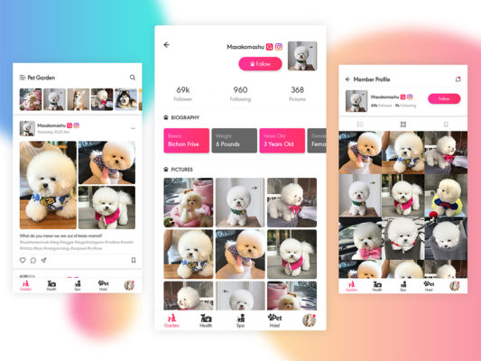 Social Photo Sharing App Free PSD
